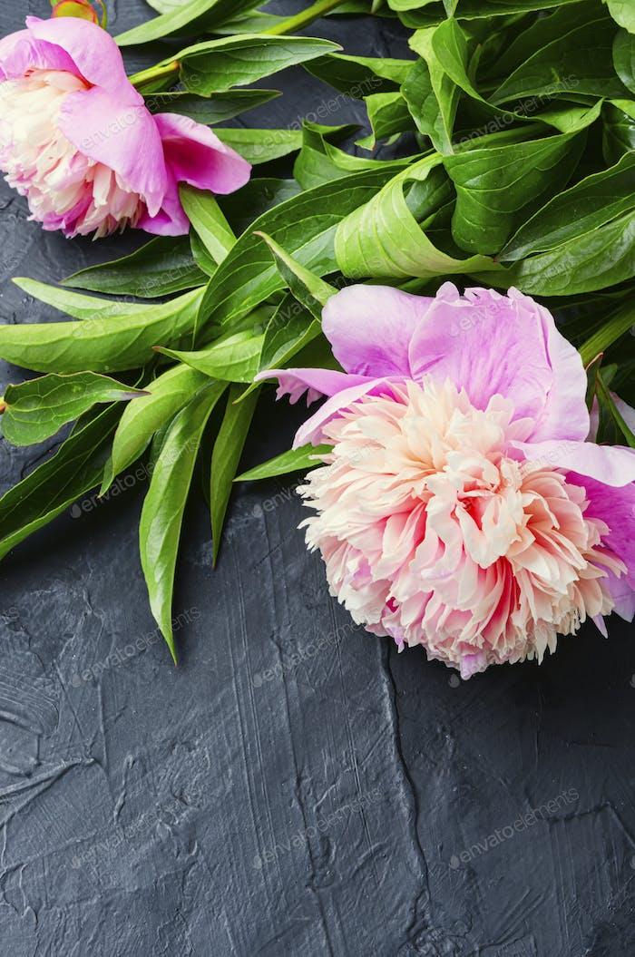 Bouquet von Pfingstrosen auf dem Tisch