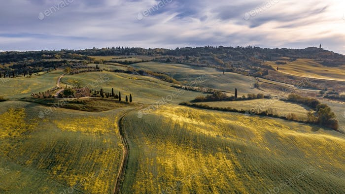Tranquil landscape Tuscany