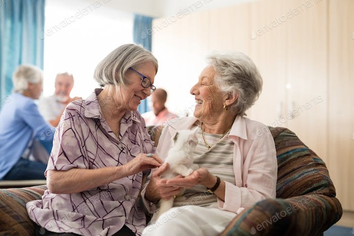 Senior women talking while stroking kitten