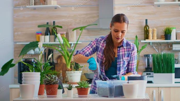 Woman house gardening in kitchen