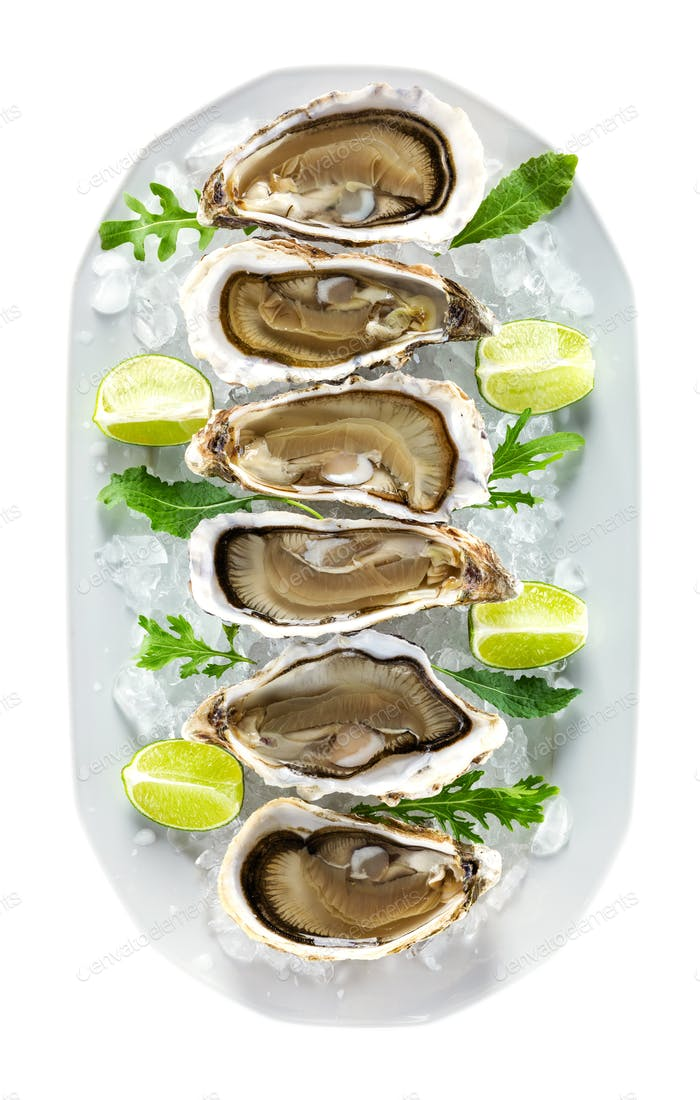 Plate with fresh oysters on ice, with clipping path.