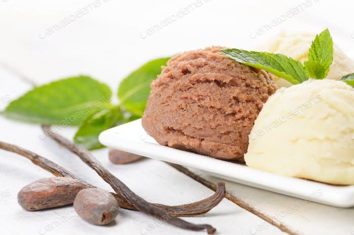 Cocoa and vanilla ice cream scoop