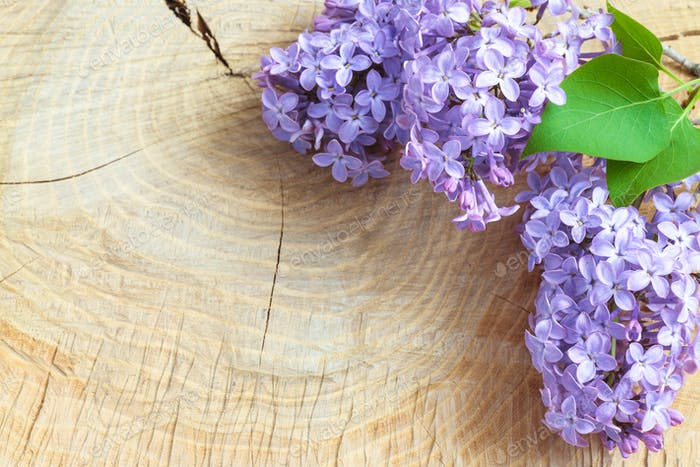 Beautiful lilac flowers on a wooden vintage board