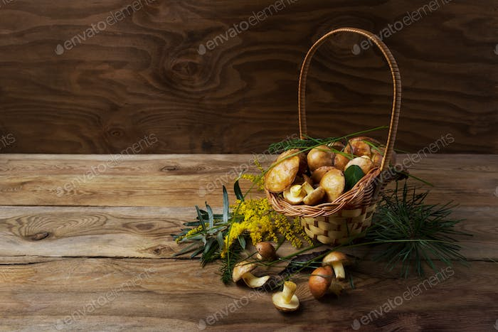 Wicker basket with forest mushrooms on the rustic background.