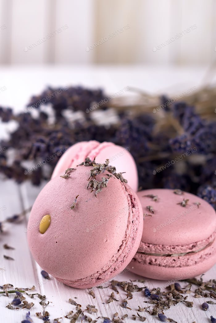 sweet lavender macaroons French with flowers lavender on white wooden background,
