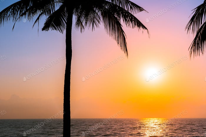 Beautiful Silhouette coconut palm tree on sky neary sea ocean be