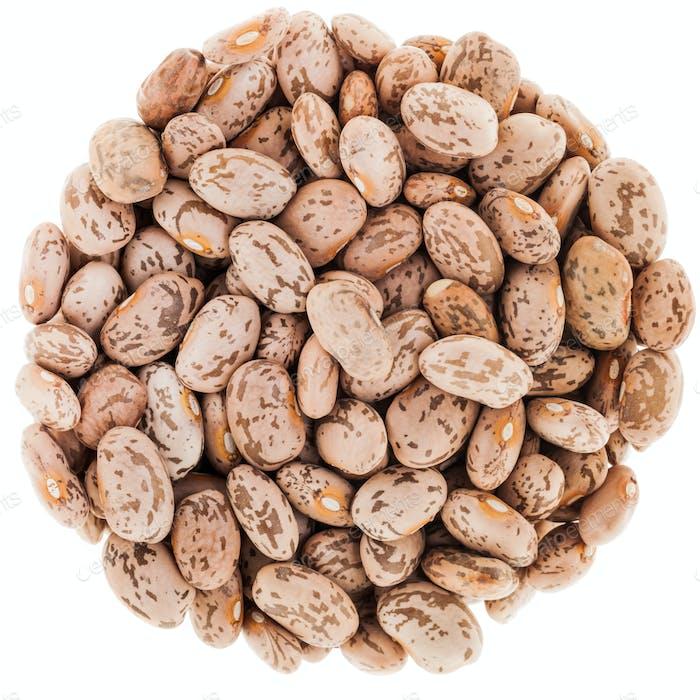 Circle Texture of Beige Big Beans