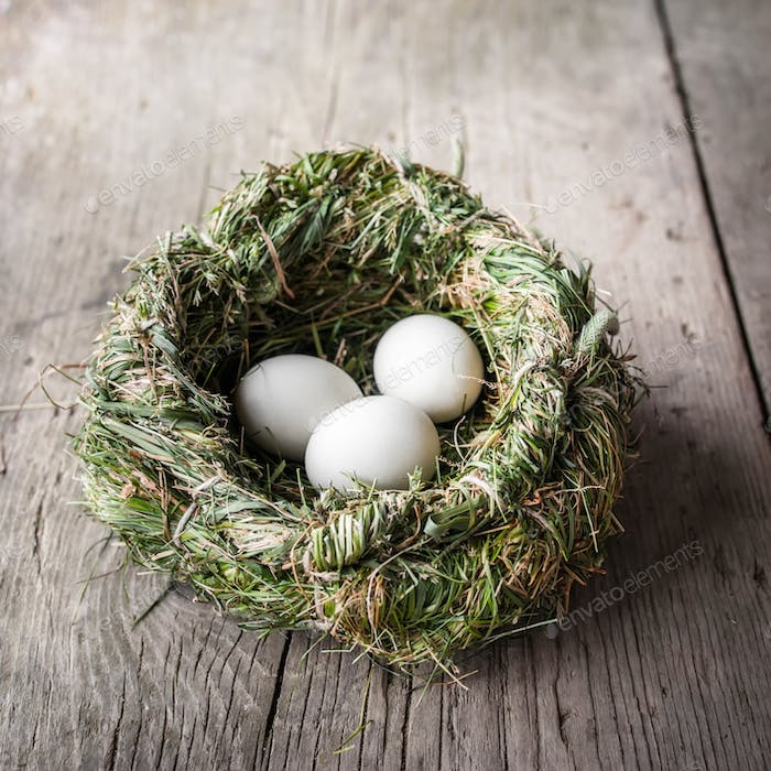 Organic white eggs in hay nest. Eco food