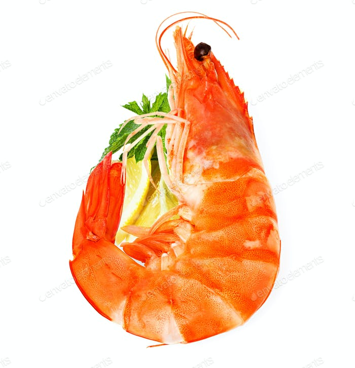 fresh shrimp with lemon and mint isolated