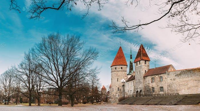 Tallinn, Estonia. Part Of Tallinn City Wall. Kuldjala Torn Tower, Sauna Tower Saunatorn. Old Walls