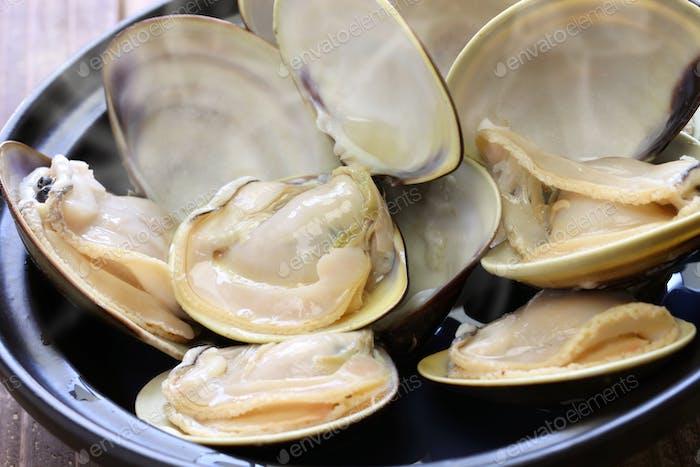 sake steamed japanese clams, hamaguri no sakamushi