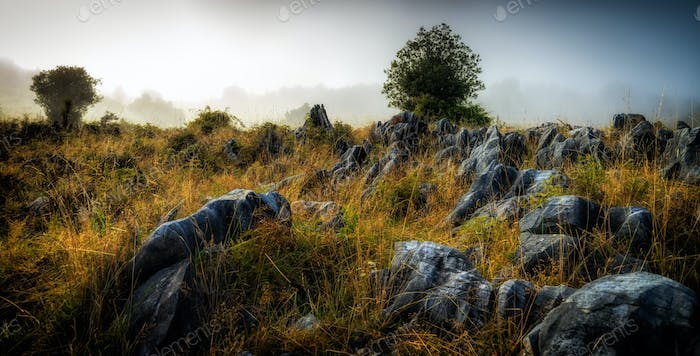Granite rocks in the fog, New Zealand