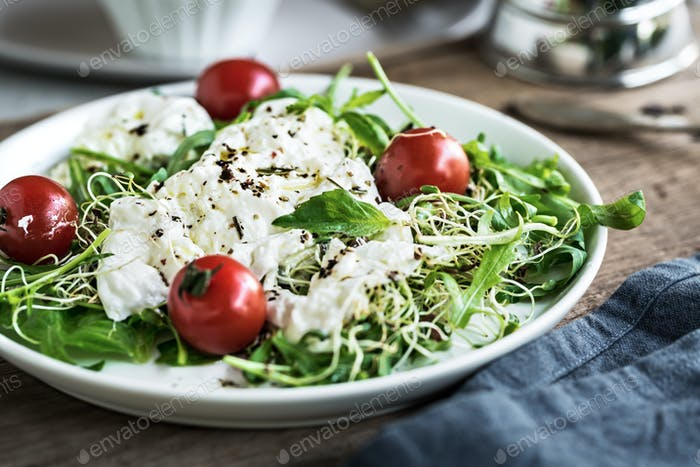 Burrata with Cherry Tomatoes and Alfalfa Sprouts