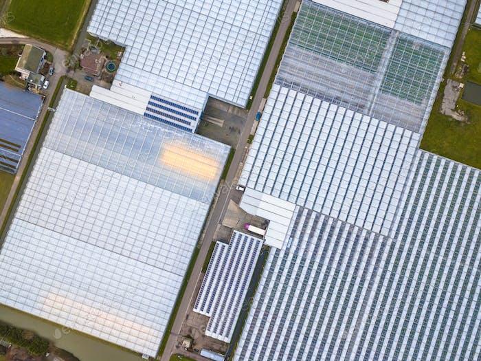 Oben nach unten Luftaufnahme des riesigen Gewächshaus-Gartenbaugebiets