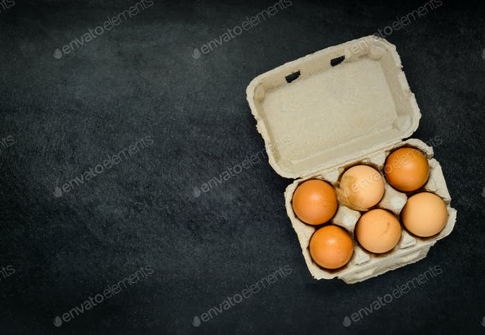 Egg Carton with Copy Space