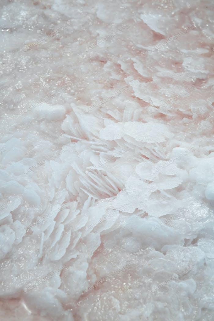 Detail of salt in a salty pink lagoon