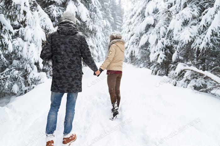 Junges Paar zu Fuß in Schnee Wald im Freien Mann und Frau halten Hände zurück Ansicht