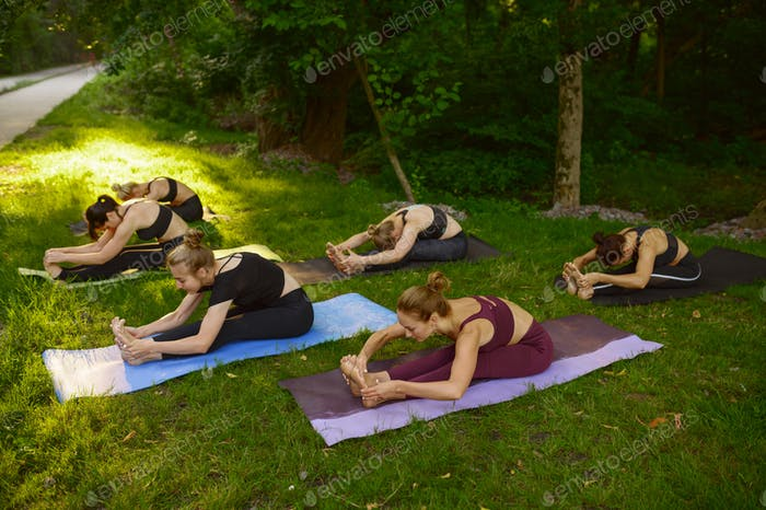 Women doing exercise on mats, group yoga in park