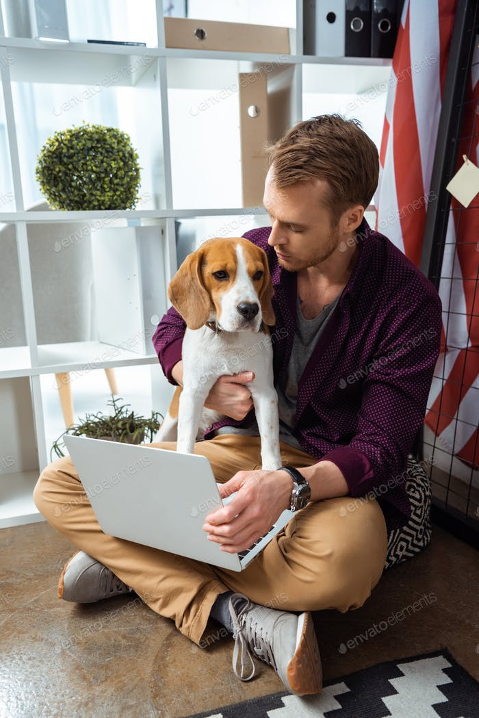 Männlich Freiberufler mit Laptop hält Beagle in der Nähe von Usa Flagge im Home Office