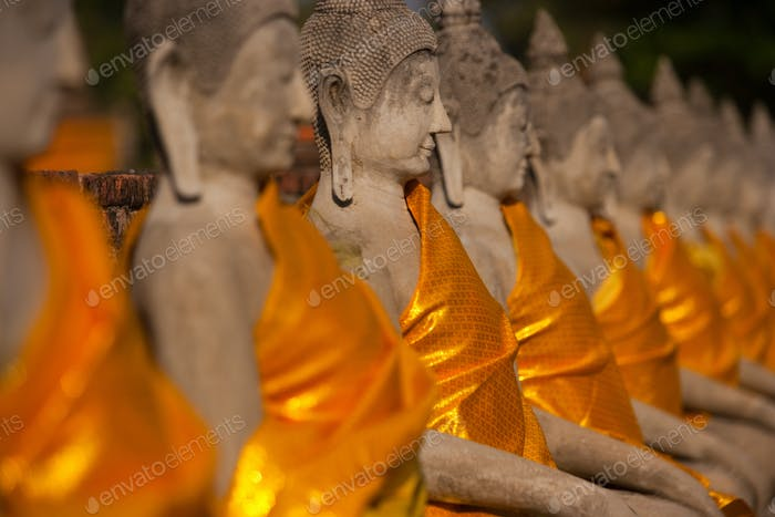 Rows of seated Buddha statues, in saffron robes at Wat Yai Chai Mongkon Buddhist temple.