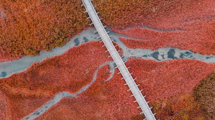 Wooden Bridge Over Autumnal Grassland. Abstract Pattern. Top Dow