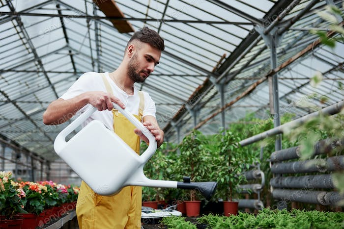 Stylish beautiful bearded man works in hothouse holding the canister with water