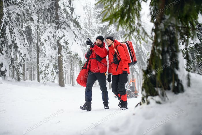 Paramedics from mountain rescue service walking outdoors in winter in forest.