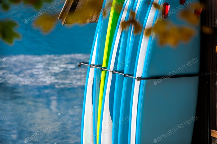 Paddle Boards Rental