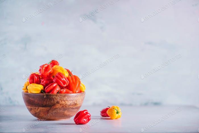 Bunte Scotch Motorhaube Chili Paprika in Holzschale auf grauem Hintergrund. Kopierbereich
