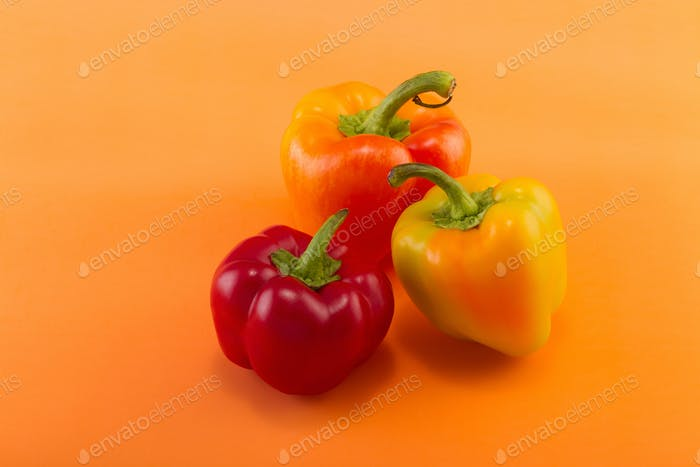 Sweet bell pepper on a colored background. Studio light. Top view