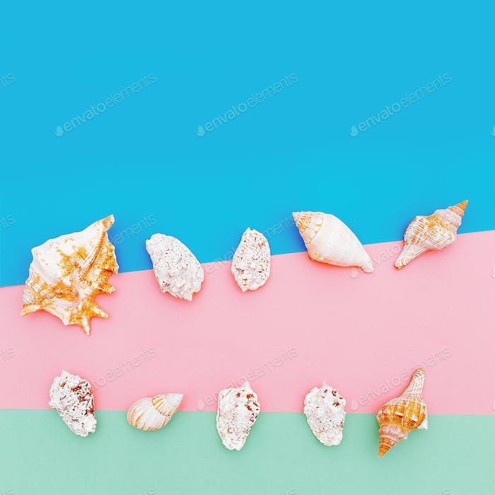 Set shells. Minimal art design