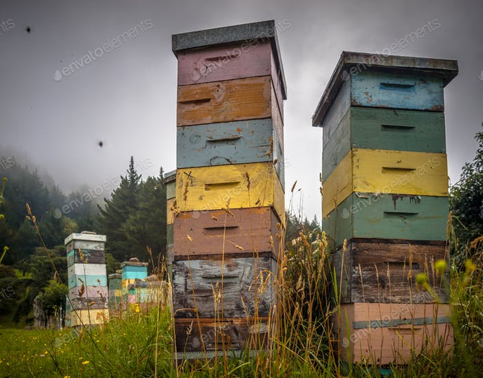 Colorful wooden Bee Hives