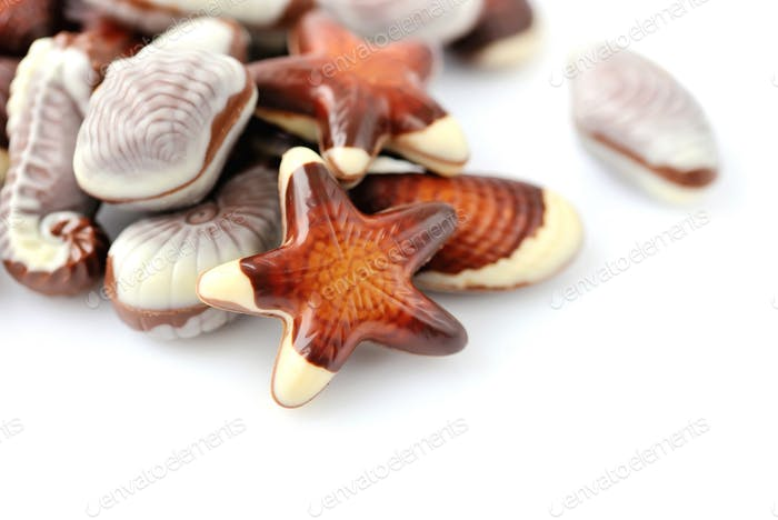 Swiss chocolate seashells on white background