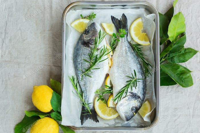Fresh raw dorado fish with lemon, rosemary on kitchen table
