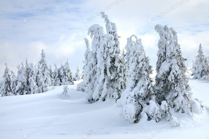 Beautiful picturesque winter slope with funiculars