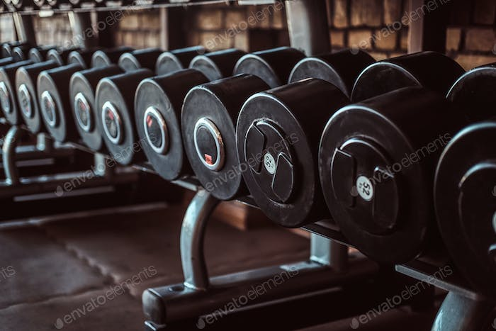 Photo of many different dumbbells in modern sunny gym