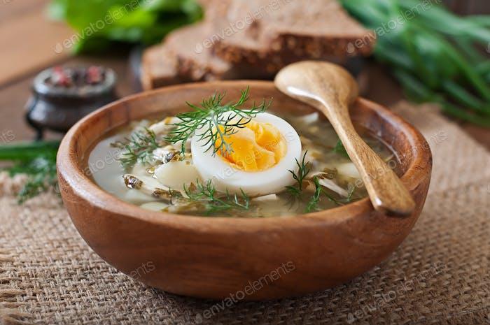 Grüne Suppe von Sauerampfer
