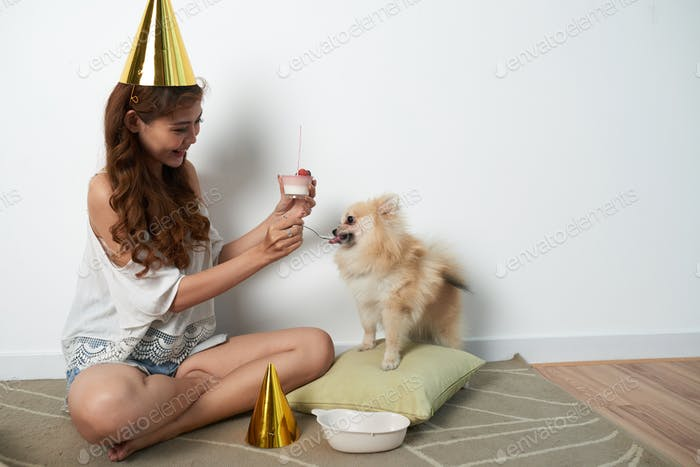 LIttle party with pet