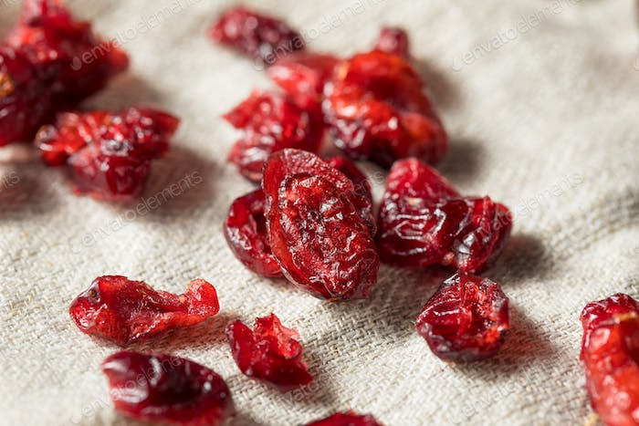 Organic Raw Dry Cranberries