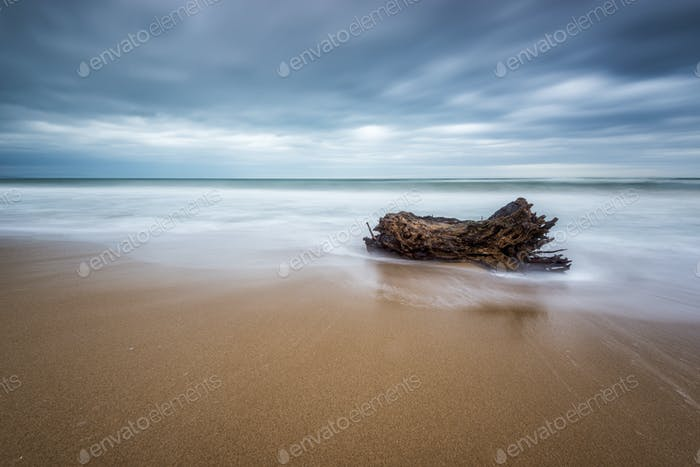 Stormy morning view at a sandy beach with waves