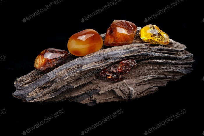 Natural amber. Several pieces of different colors of natural amber on large piece of stoned wood