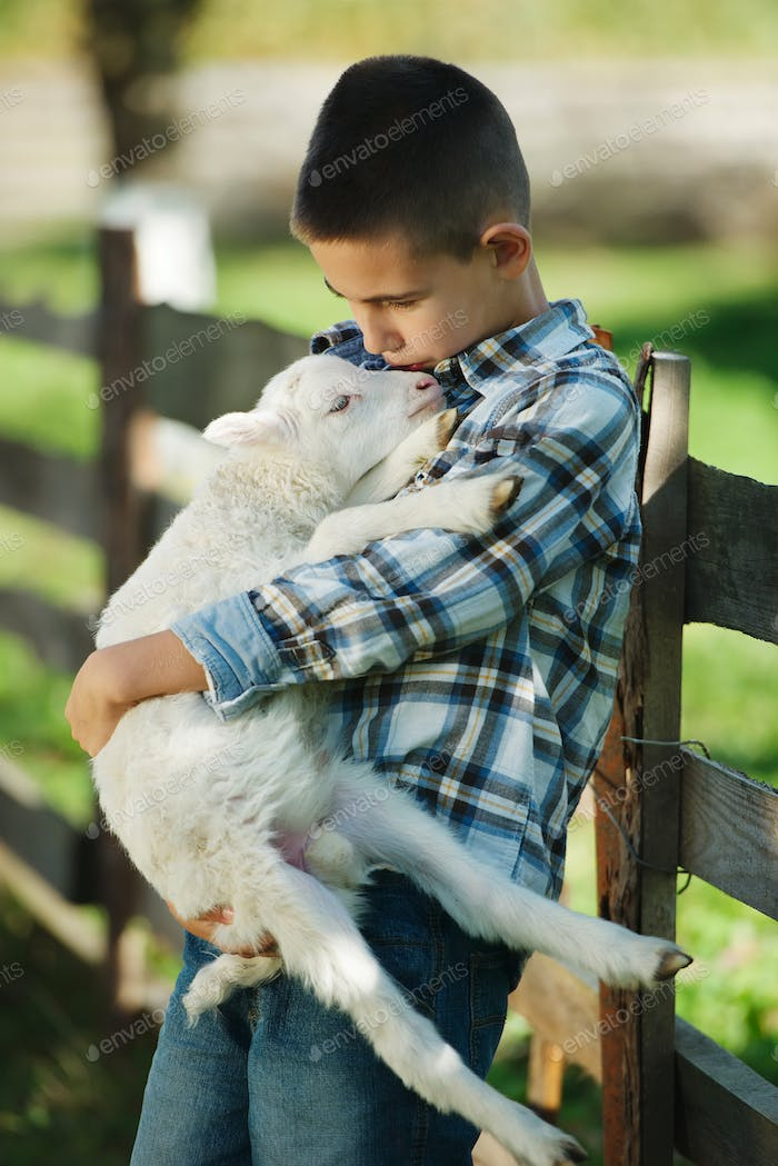 boy with lamb on the farm