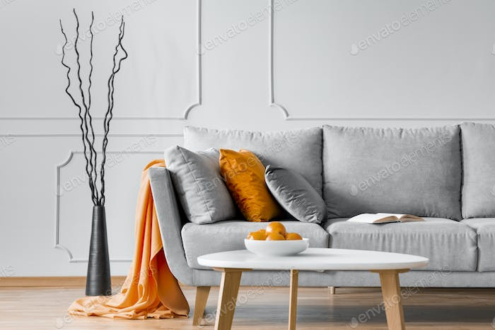 Branches next to a sofa with orange blanket and pillow in a living room interior. Real photo