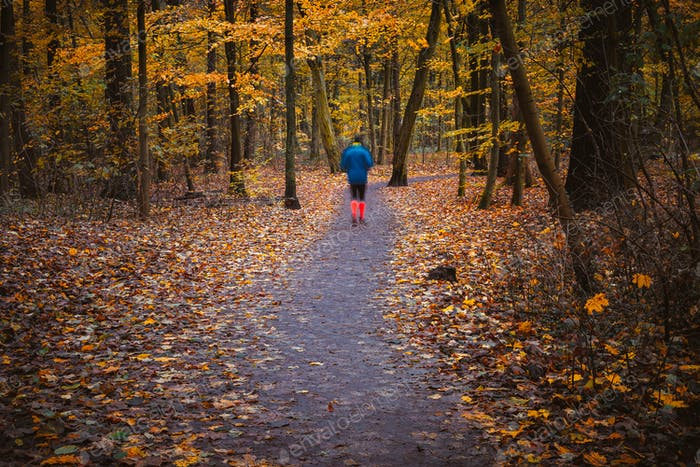 Ghostly sport hike figure in autumnal square, autumn forest landscape, trees with yellow leaves and