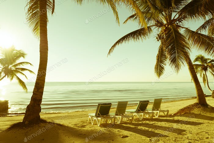 Tropical Beach Retro Vintage