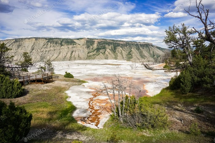 Travertine Terrace advance, Mammoth Hot Springs, Yellowstone National Park