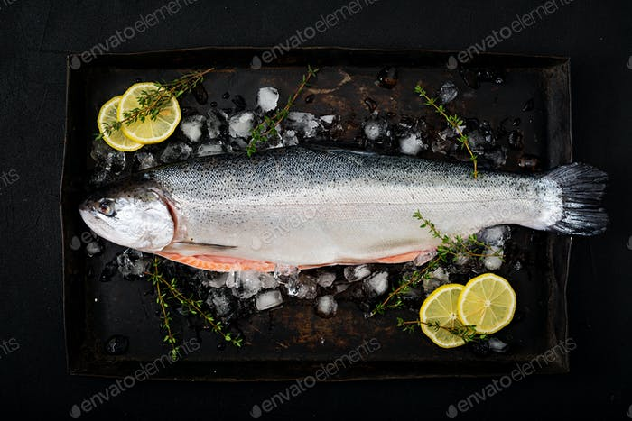 Fresh raw salmon red fish with ice on a dark background. Flat lay. Top view