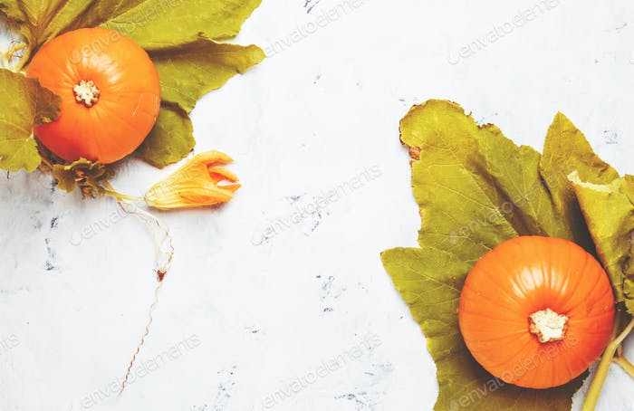 Autumn background with pumpkins and leaves, gray table, top view, space for text