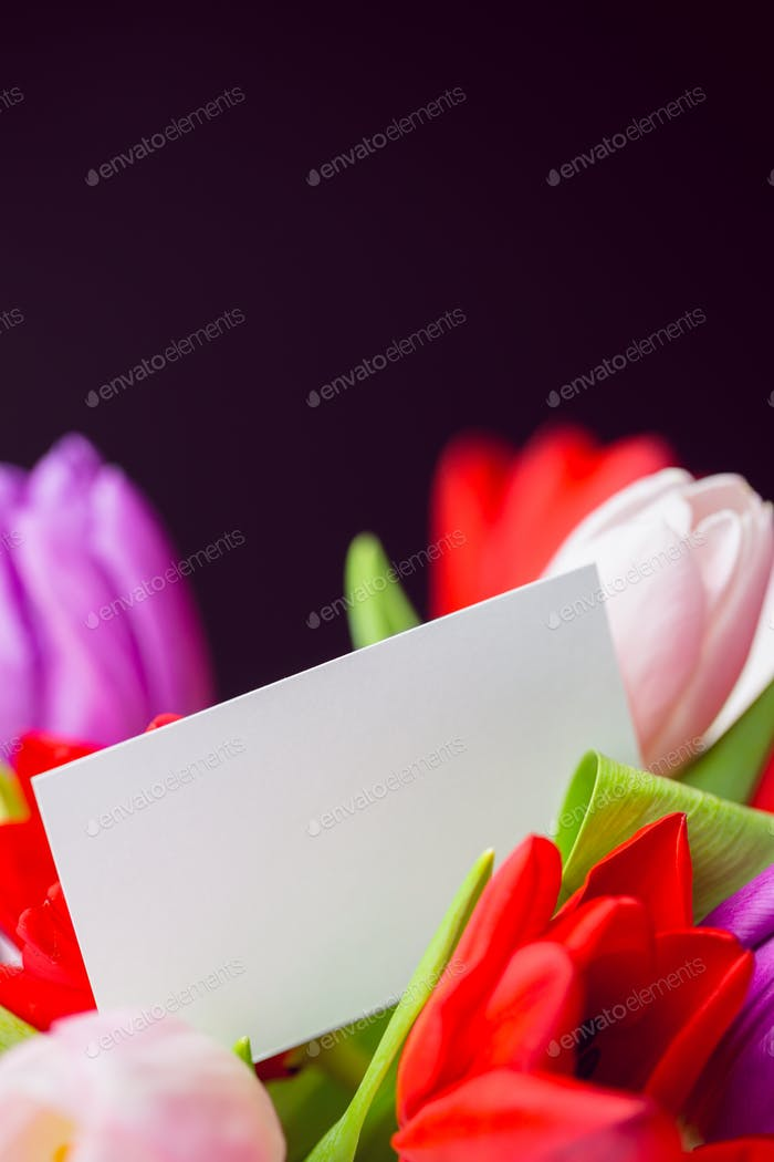 Bunch of tulips and white card on black background