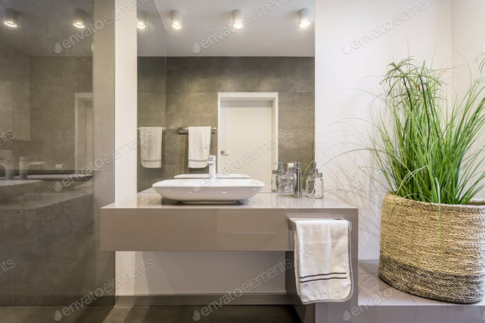 Simple but stylish lavatory